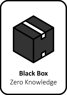Black box pentesten hacker organisatie applicaties beveiliging informatie
