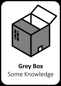 Grey box pentesten risico hackers geautomatiseerde netwerk penetratietest nederland