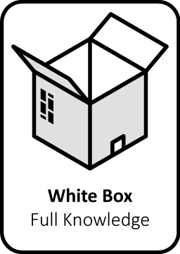 white box pentesten ethische hardware vulnerability pentester security audit computersystemen