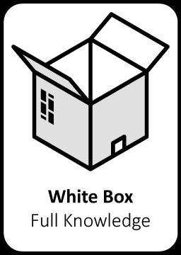 white box pentesten ethische hardware vulnerability pentester security audit computersystemen